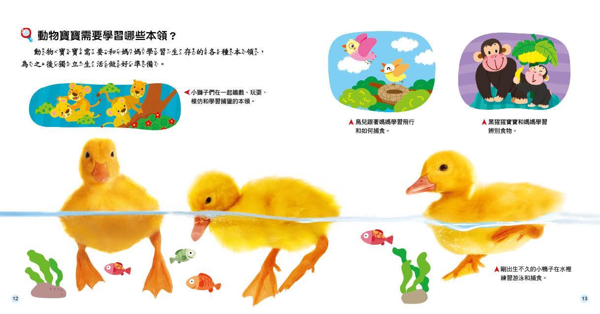 十万个为什麽:动物世界-ㄚ德俐鼠(书立得)亲子童书